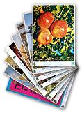 tubishvat main - שבעת המינים - סט תמונות